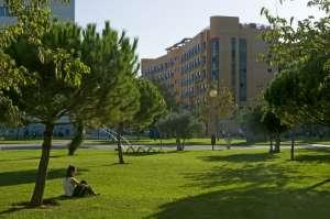Junior Spanish Summer School in Valencia 5