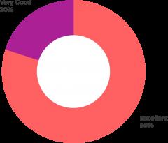 estaditiscas-actividades-tsp-web